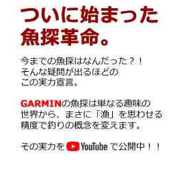 GARMIN 動画